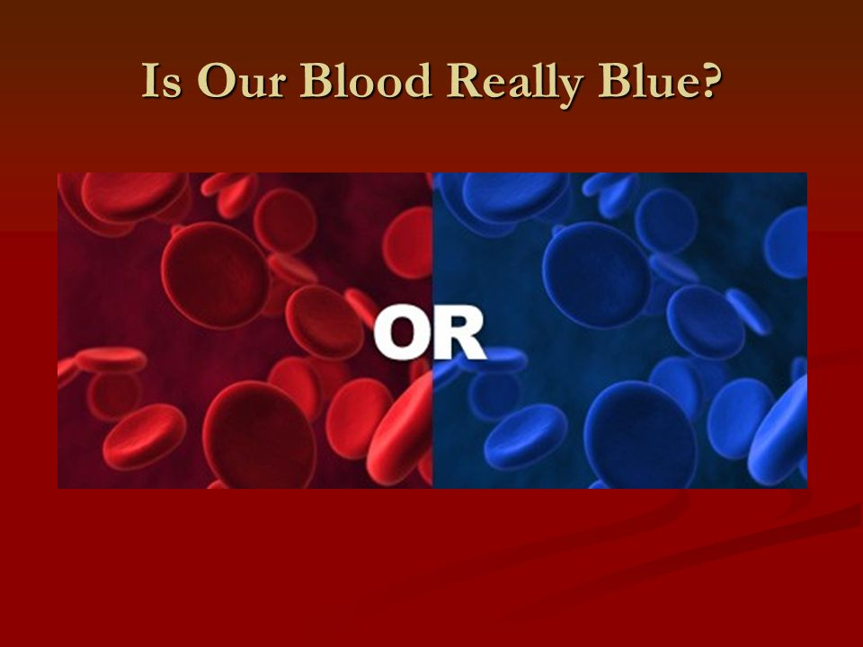 Blood that is blue
